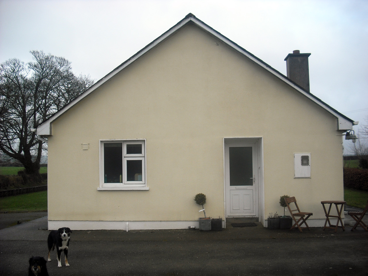 Existing House: Rear Elevation. (Before Extension + Alterations). Eoin O'Keeffe Architects 2020.